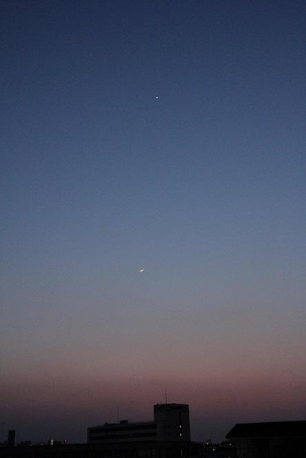 金星と細い月縮小.jpg
